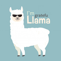 Thank You Llama by NaveenNBhat