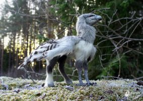 Buckbeak - Artdoll (Sold) by Escaron