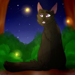 Midnightpaw And The Fireflies by nightrelic