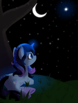 Stardust's Wish by equinepalette