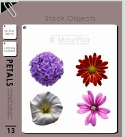 Object Pack - Petals by iMouritsa