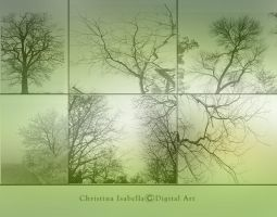 Tree Brush Pack by ChristinaIsabella
