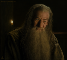 A Chance Meeting with Gandalf the Grey by DarqueJackal