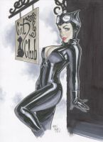 Catwoman by TheGraphicNovelist