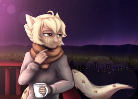 Looking at the Night City by Nekinu-the-Outsider