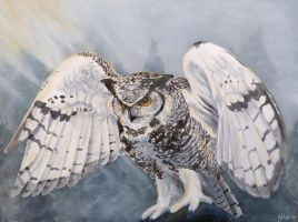 Talisien, the Lord of the Owls by hannahash