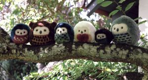 Epic tree trunk - More owls by demiveemon