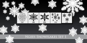 Ngees Snowflake Brushes Set 1 by ngee