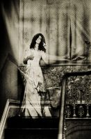 lady wesley by andrewfphoto