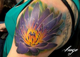 ' Water Lily ' by IamValo