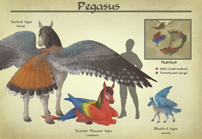 AA: Pegasus by number11train
