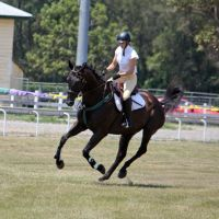 STOCK Showjumping 373 by aussiegal7
