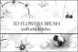 3D FLOWERS BRUSH by anaRasha-stock