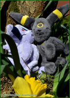 Spring is coming - Umbreon and Espeon by naturekissedkitten
