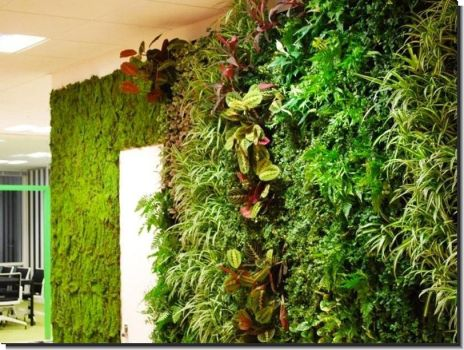 Tips On Building Living Walls by verticalplantersnet