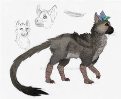 Trico sketches by Arvemis