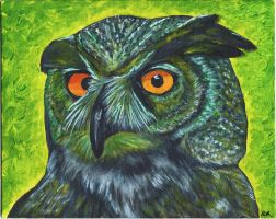 Great Horned Owl by peimar