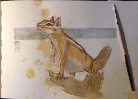 Today's watercolor sketch: Chipmunk by RM-WINCH