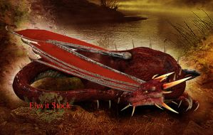 E-S Red Dragon by Elevit-Stock