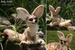 Needle felted baby fennec by EosFoxx