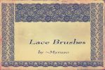 Lace brushes by Myruso