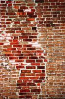 brick wall by xthumbtakx