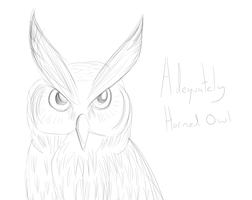 Great horned owl by BROFISTICUSMAXIMUS