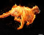 African Fire by punkyto