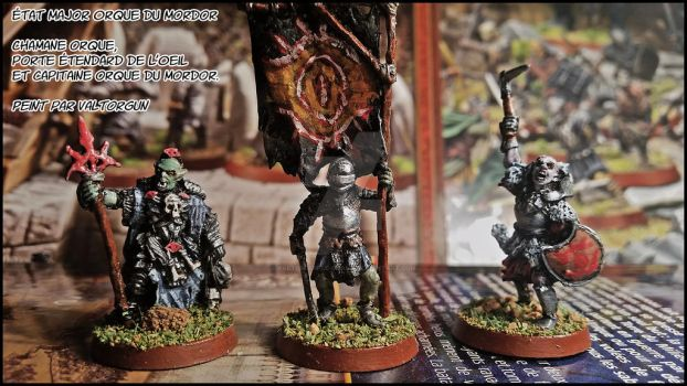 Photo figurines Orcs etat major by Valtorgun-le-Grand
