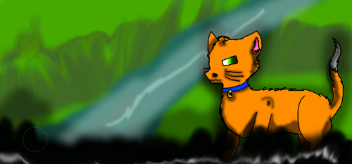 Rusty The Cat by thelunafamily