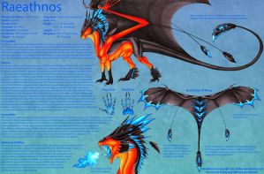 Raeathnos Ref Sheet (Outdated) by Sky-Shifter