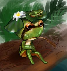 Pacific Tree Frog by Sunriseoflove