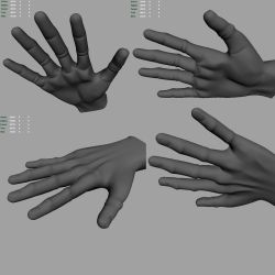 3d hand model by truckless