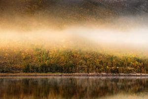 Remote Norway pt. XXXI by TheChosenPesssimist