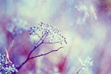 cold winter by BaxiaArt