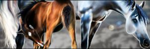 Timbie-Banner-3 by Charmed-Studios