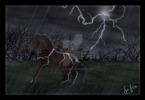 Storm's Storm by Jullelin