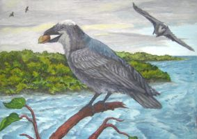 Mangrove crow by AlexSone