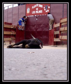 Plaza de ToRos by jaimemh