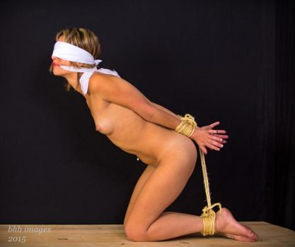 Hogties7 by dungeonguy59