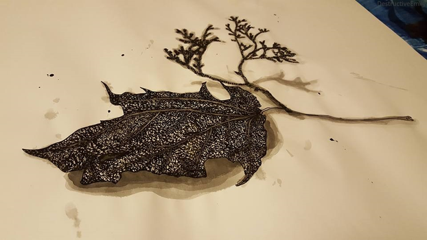 Leaf Project by DestrctiveEmily