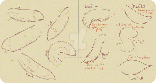 Realistic Canine Tail Tutorial by AntiDarkHeart