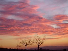 December sky 4 by MorticiaAdams