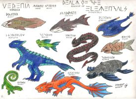 Verenia Marine Species by Vincent-Wullf