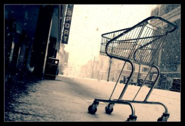 Shopping cart by geckokid
