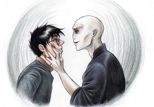 Deathly Hallows Harrymort by Mistress-D
