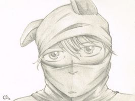 Masked by lille-cp