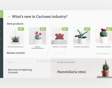 UI for cactus web by vegallas
