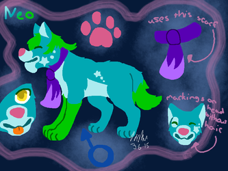 Neo refrence sheet by jadenime