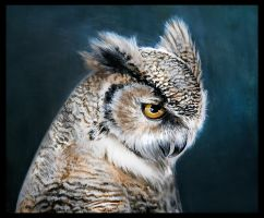 The Eurasian eagle-owl by Reza-malinova